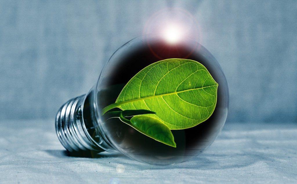 Energie verte panneaux photovoltaiques